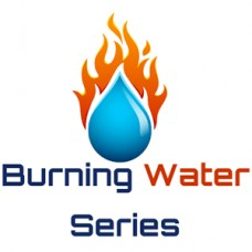 【FX自動売買EA】Burning Waterの評価・レビュー・検証結果まとめ