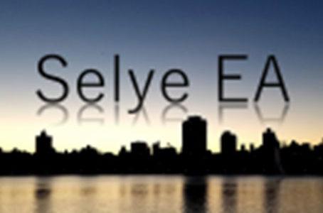 【FX自動売買EA】Selye EAの評価・レビュー・検証結果まとめ