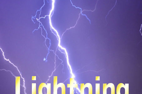 【FX自動売買EA】Lightningの評価・レビュー・検証結果まとめ