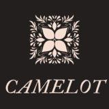 【FX自動売買EA】CAMELOTの評価・レビュー・検証結果まとめ