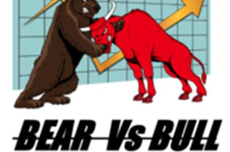 【FX自動売買EA】Bear Vs Bull の評価・レビュー・検証結果まとめ